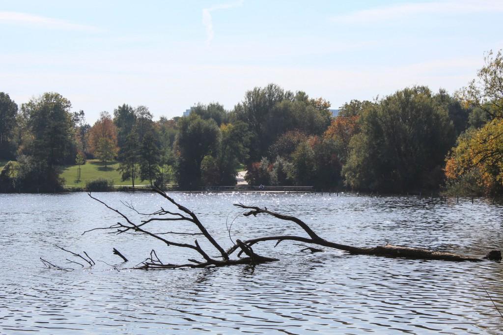 Park am Max-Eyth-See im Herbst